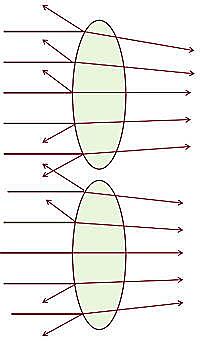Lichttransmission - Jagd-Fernglas
