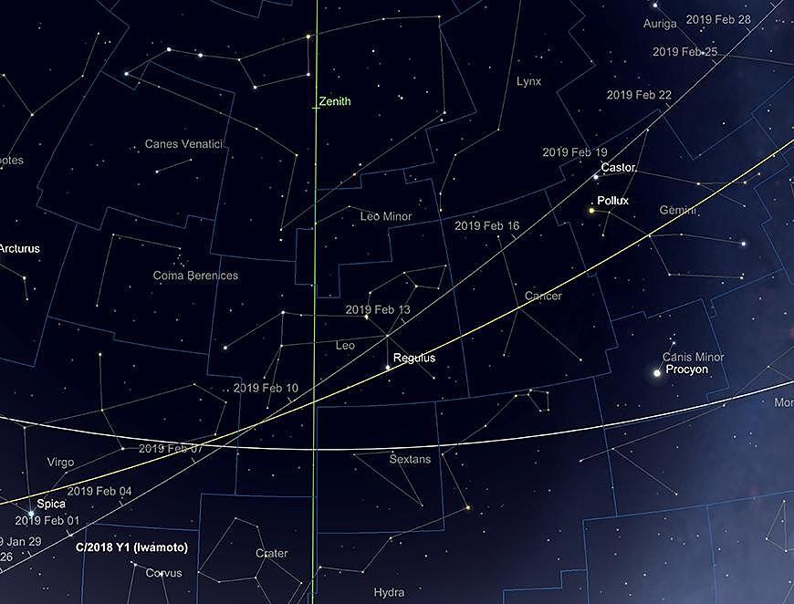 La trajectoire de la comète Iwamoto, février 2019